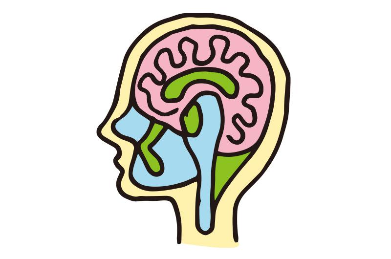 脳ドックも土日に受けられます